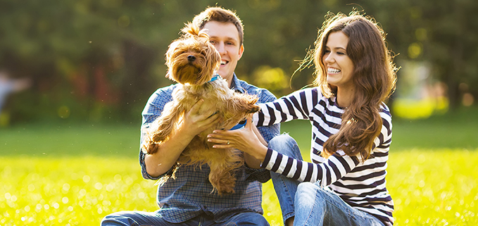 Couple with dog in park